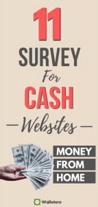Best Sites to Take Paid Online Surveys for Cash